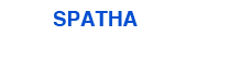 Spatha Investigations and Risk
